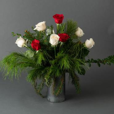 Holiday Roses