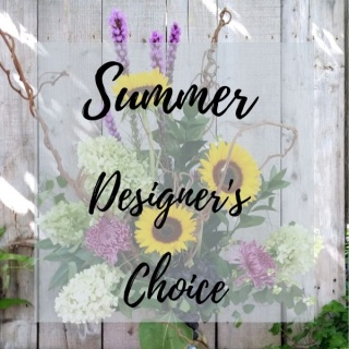 Summer Designer\'s choice